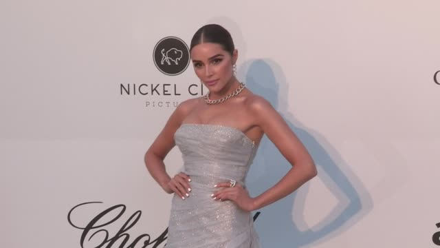 Olivia Culpo Alina Baikova Chase Carter Meredith Mickelson Olivia Edit Aarnio Jasmine Tookes and more on the red carpet for the 2019 Cannes amfAR...