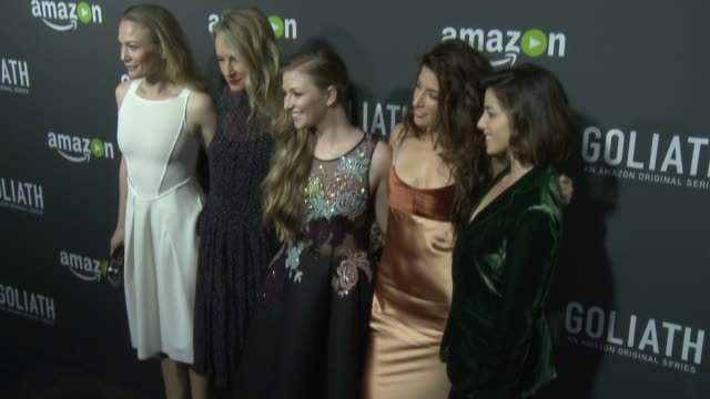 olivia thirlby, sarah wynter, tania raymonde, diana hopper, and ever carradine at the amazon red carpet premiere screening of original drama series... - サラ ウィンター点の映像素材/bロール