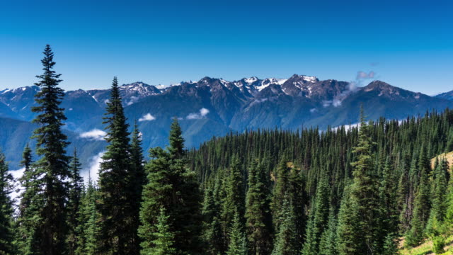 olympic mountain peaks from hurricane ridge - time lapse - olympic national park stock videos and b-roll footage