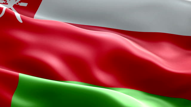 omani flag - oman flag stock videos and b-roll footage