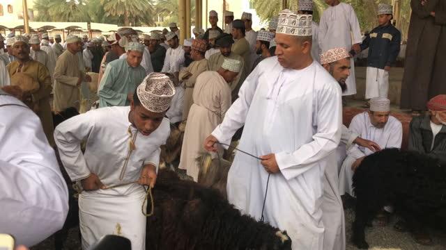 omani men in traditional dress, livestock or animal market at bahla, hajar al gharbi mountains, al dakhliyah region, sultanate on february 14, 2019. - mid adult stock videos & royalty-free footage
