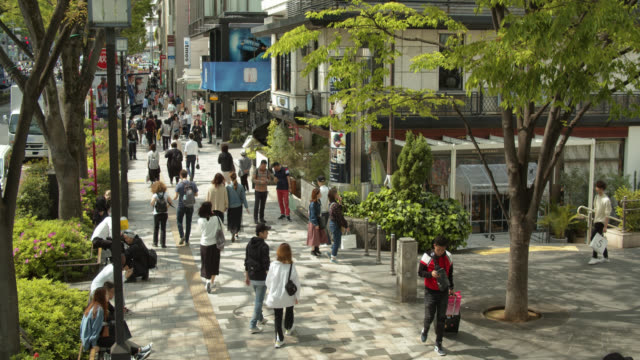 omotesando shoppers on sunny day in tokyo - tilt up stock videos & royalty-free footage