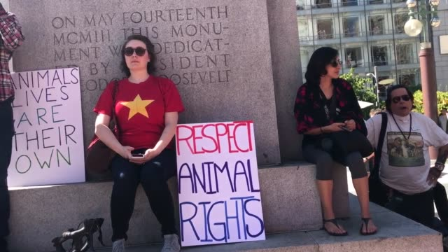 vídeos de stock, filmes e b-roll de on 7/22/2017 there was a march in san francisco to close all slaughterhouses at union square - vegan