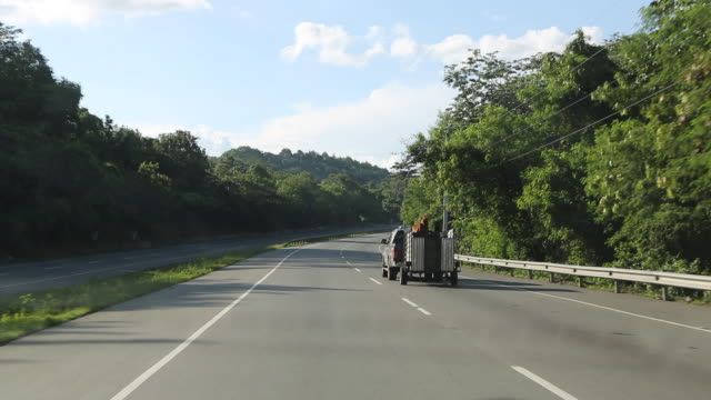 on a countryside highway in santo domingo out of a driving car that is about to pass a tagged pick-up truck with two horses in the trailer. - trailer stock videos & royalty-free footage