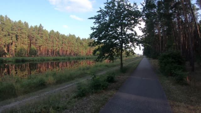 on a footpath next to a forest and canal - next to stock videos & royalty-free footage