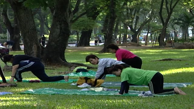 on a group of women practicing yoga on mats in a park. yoga, practiced by over 200 million people, has a un designated international day of yoga. - mat stock videos & royalty-free footage