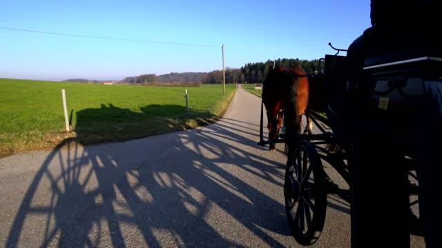 pov: 馬車に乗る - ベルヒテスガーデナーランド点の映像素材/bロール