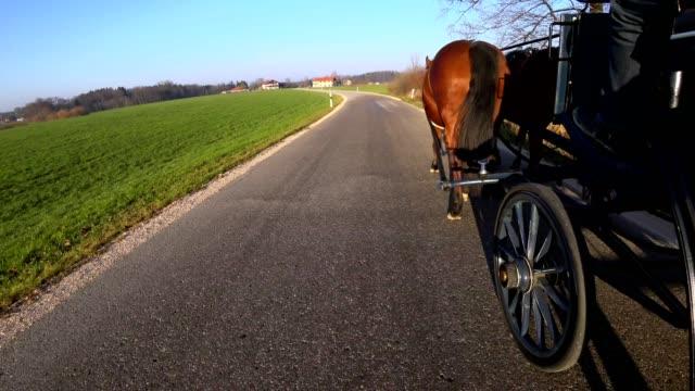 vídeos y material grabado en eventos de stock de pov: en un carruaje tirado por caballos - carruaje