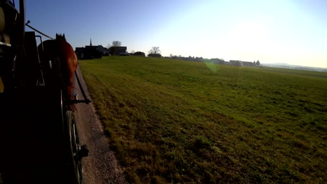 pov: 馬車に乗る - 四輪馬車点の映像素材/bロール