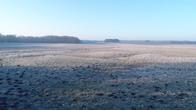 on a winter day in east anglia in frost covered field - rural scene stock videos & royalty-free footage