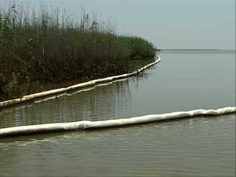 on boat passing stand of marsh grasses and absorbent containment boom lines - porous stock videos & royalty-free footage