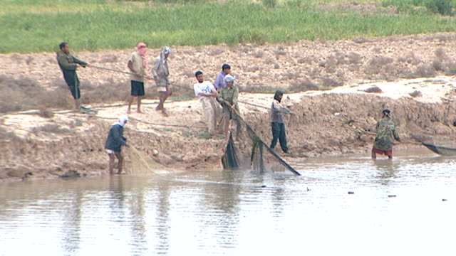 on fishermen on the bank of shatt al-arab pulling on a net. the river is formed by the confluence of the euphrates and tigris and runs into the... - middle east stock videos & royalty-free footage