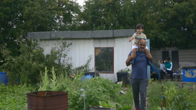 on grandads shoulders at allotment - simple living stock videos & royalty-free footage