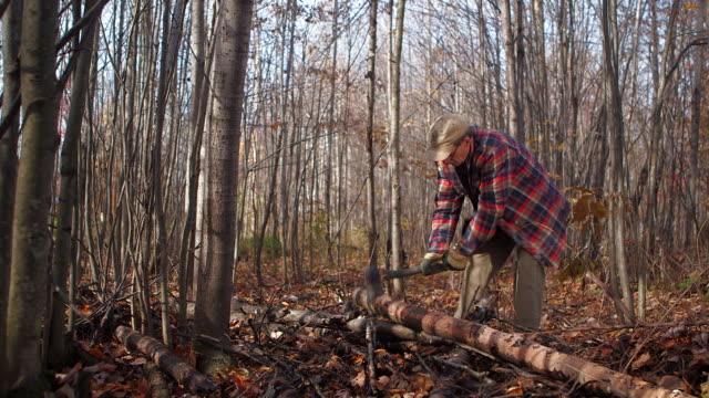 vídeos y material grabado en eventos de stock de dolly in on lumberjack chopping tree - leñador