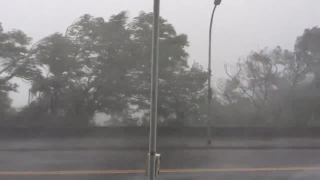 on sept. 27th, 2016 typhoon megi lashed taiwan with wind and rain. this video is from taipei national university of the arts looking south. - メギ点の映像素材/bロール