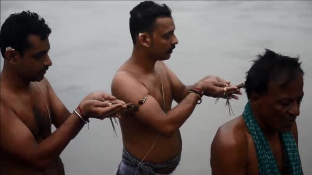 on the banks of the river ganges indian hindu devotees perform tarpan rituals to pay obeisance to their forefathers on the last day of pitrupaksh the... - hooved animal stock videos & royalty-free footage