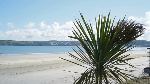on the beach at st michel en greve - david johnson stock videos & royalty-free footage