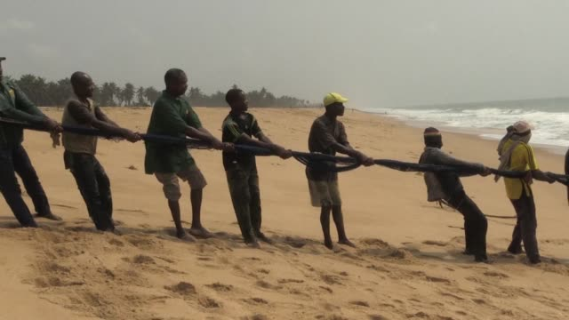 on the beaches outside ouidah in benin dozens of communities make a living from small scale traditional fishing pulling hake and barracuda from the... - benin stock videos and b-roll footage