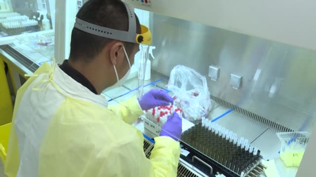 on the outskirts of paris, the eurofins-biomnis laboratory is analysing pcr test samples from all over france, 24 hours a day, seven days a week, as... - growth stock videos & royalty-free footage