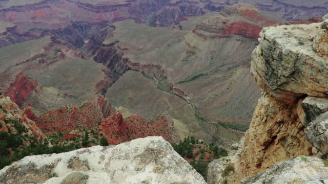 on the south rim of the grand canyon - at the edge of stock videos and b-roll footage