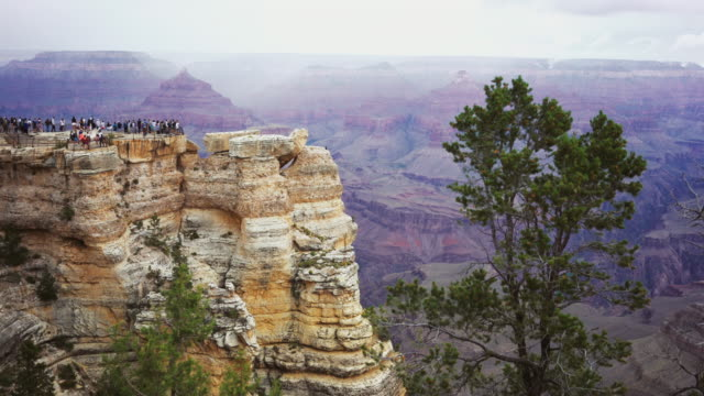 on the south rim of the grand canyon - grand canyon video stock e b–roll
