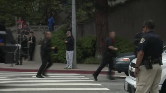 on ucla campus after shooting which was deemed a murder-suicide. - los angeles police department stock videos & royalty-free footage