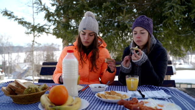 on winter vacation with my sister - raw food diet stock videos & royalty-free footage