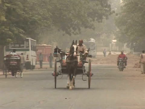 once a sign of wealth and prestige new delhi's horsedrawn carriages are being restricted new dehli india - personal land vehicle stock videos & royalty-free footage