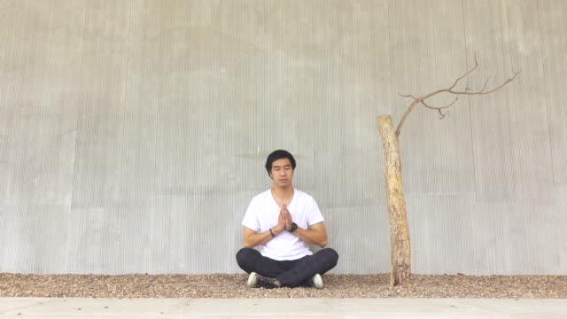 vídeos y material grabado en eventos de stock de un hombre asiático en un jardín de rocas meditando y orando. usando una camiseta blanca y sentado al lado de un árbol seco, equilibrio y estilo de vida - camiseta blanca