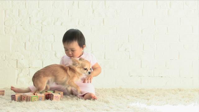 one baby is playing with blocks - 女の赤ちゃん点の映像素材/bロール