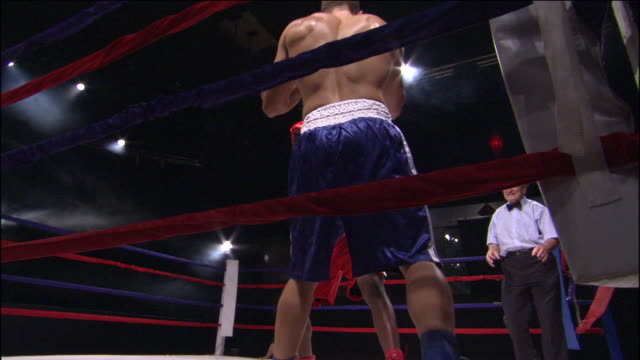 vídeos de stock, filmes e b-roll de la ms one boxer punching another into corner of ring during fight while referee and trainer watch / jacksonville, florida, usa - posição de combate