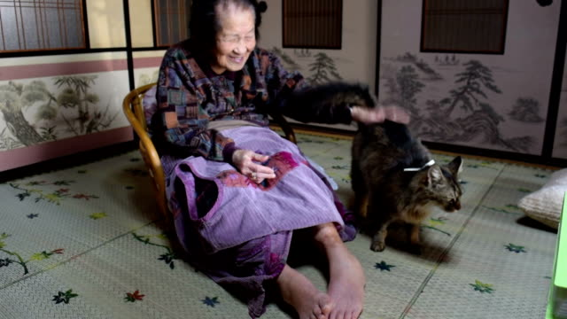 vídeos de stock e filmes b-roll de one day a cat turned up at centenarian namie takagi's home that she had never seen before the cat obviously liked being around her and her daughter... - centenário