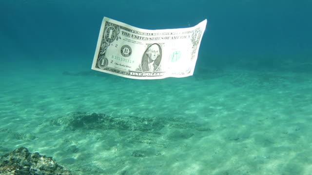 海の水に浮かぶ 1 つのドル札 - 沈没する点の映像素材/bロール