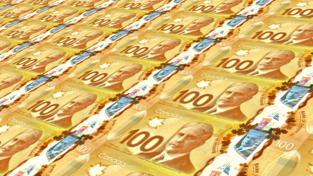 one hundred canadian dollar bill - male likeness stock videos & royalty-free footage