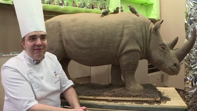 one month after a fouryearold white rhino was shot and killed for its horn in a zoo in thoiry french chocolatier erick thevenot has paid tribute to... - french horn stock videos and b-roll footage