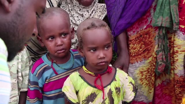 one of the worst droughts in decades has pushed more than 10 million ethiopians into dire need of food aid for survival just a step away from famine... - east africa stock videos & royalty-free footage