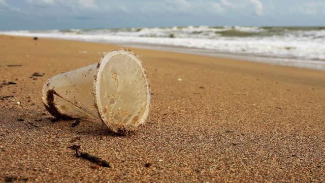 en engångs användning plast dryck kartong förorening på en blåsig strand - engångsmugg bildbanksvideor och videomaterial från bakom kulisserna