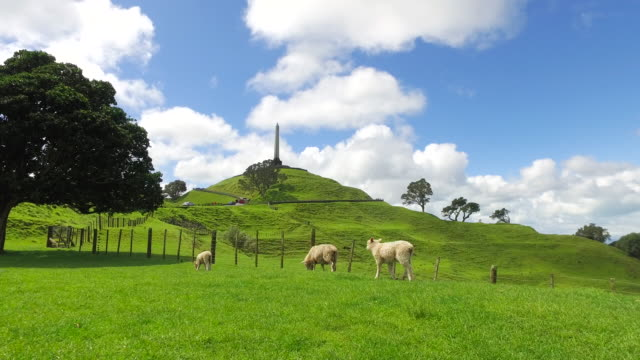 one tree hill, auckland, new zealand. - hill stock videos & royalty-free footage