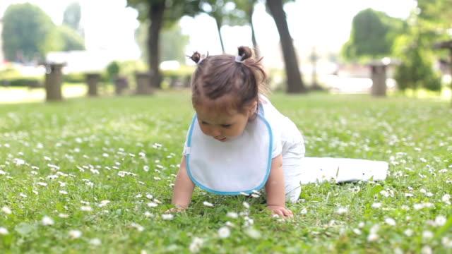 vídeos de stock, filmes e b-roll de um ano bebê menina, aprendendo para entrar em um parque, em um campo de grama, repleto de flores - comida de bebê