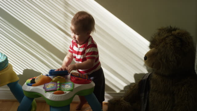 one year old baby, his mom, his dog and his giant teddy bear - one baby boy only stock videos & royalty-free footage