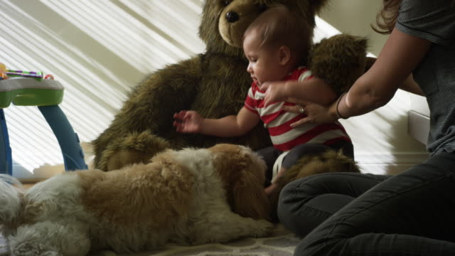 One year old baby, his mom, his dog and his giant teddy bear