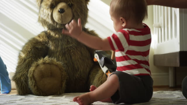 vídeos de stock, filmes e b-roll de one year old baby, his mom, his dog and his giant teddy bear - animal de brinquedo