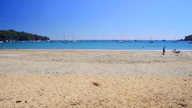 oneroa beach in waiheke island - panning stock videos & royalty-free footage