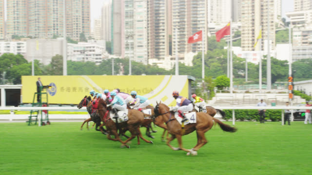 ongoing horse race in happy valley (slow motion) - horse racing stock videos & royalty-free footage