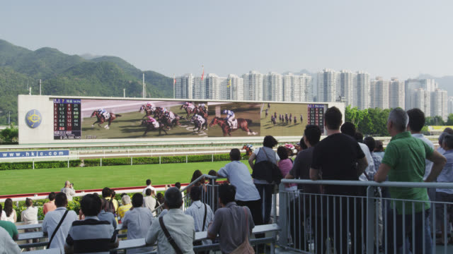 ongoing race - horseracing track stock videos and b-roll footage