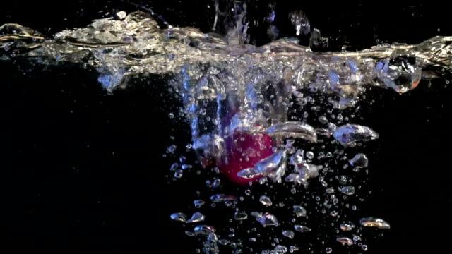 Oignon dans l'eau. Fond noir. Mouvement lent.