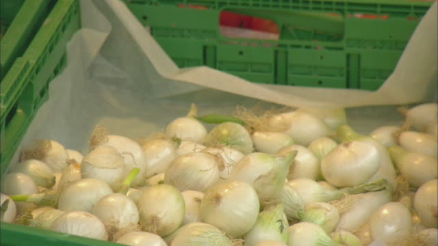 CU PAN Onions and green beans in crates, Basel, Switzerland