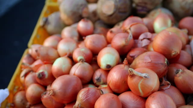 ms pan onions at market / brooklyn,new york,united states - onion stock videos & royalty-free footage
