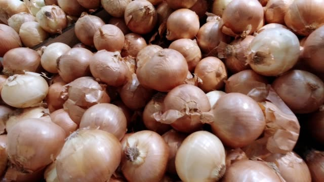 onions on shelf at supermarket - onion stock videos & royalty-free footage