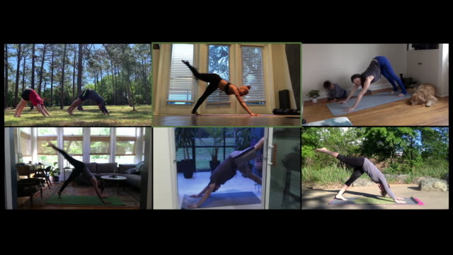 online yoga class participants practice from home - competition stock videos & royalty-free footage